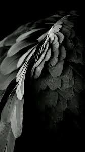 Fallen Angels - Ivy Crawford - Wattpad