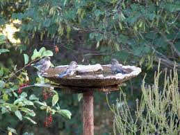 this bird bath is made out of cement and