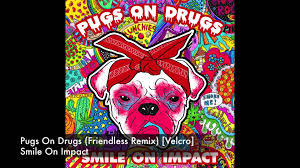 Image result for pets on drugs you tube