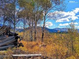 CBS 2 Boise - Fall in all its glory! Polly Barrett took... | Facebook