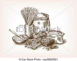 pasta still life sketch style vector ilration old hand drawn engraving imitation