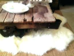 costco sheepskin rug sheepskin rug 9 costco sheepskin rug gray costco sheepskin rug