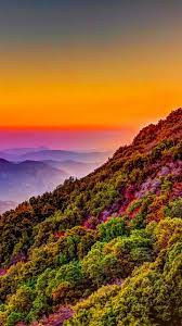Mountain Colorful Forest Nature Sunset ...