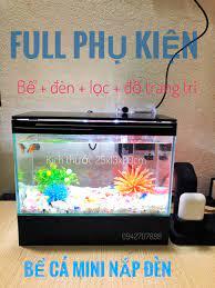 bcxs Bể cá mini đèn led có lọc thác và đồ trang trí , bể cá 25cm, bể cá để  bàn giá rẻ | Hồ cá, bể cá