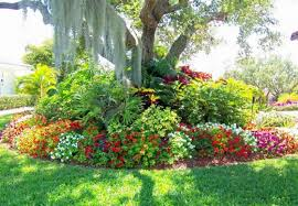 Small Picture Abundant Landscaping Around Trees Pinteres
