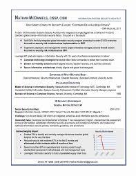Resume International Format Beautiful Best Resume Format Examples