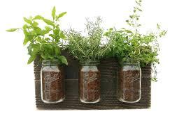 indoor herb garden diy herb garden indoor terrarium herb garden box indoor wall herb garden wall