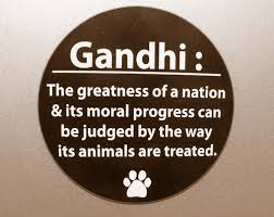 Gandhi Quotes About Animals. QuotesGram