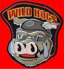 Image result for wild hogs