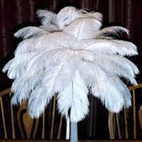 French Feathers Home Decor And Accessories Feather Centerpieces Delicate Feather Centerpieces In Wholesale 100
