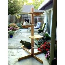 outdoor cat furniture rustic cat tree outdoor cat perch inch outdoor cat tree friendly cedar rustic outdoor cat furniture