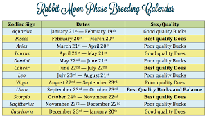 Horoscope Dates Of Birth Clothes News