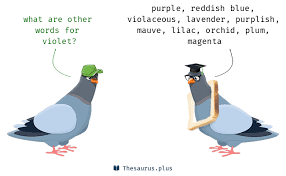 Another Word For Violet 28 Violet Synonyms Similar Words For Violet