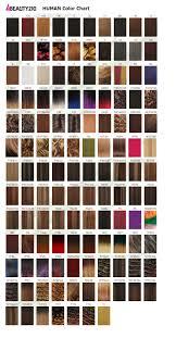 13 Rigorous Model Weave Color Chart