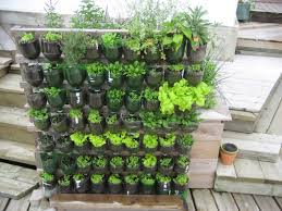 build a vertical garden from plastic bottles
