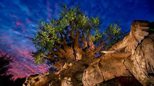 <b>Tree of Life</b> | Animal Kingdom Attractions | Walt Disney World Resort