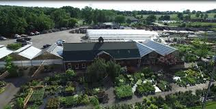 bristol s garden center nursery