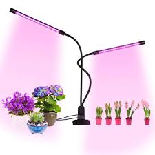 Growing Orchids Under Led Lights Us 19 75 24 Off 20w Led Grow Light Dual Head Plant Lamp With Timing Function 360 Degree Rotation Indoor Flower Seeds Greenhouse Growing Lamp In Led
