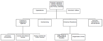 Criminal Law Elements Chart 2 Profile Of The Criminal Law Policy Section Criminal Law