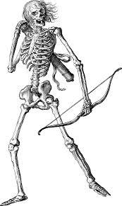 Skeleton Bones Line Art Free Vector Graphic On Pixabay