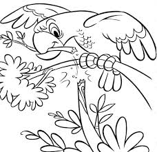 Small Picture Zoo Coloring Pages Coloring Lab