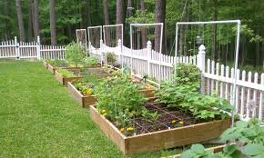 garden irrigation system. Likeable Sprinkler Juice: Setting Up A Garden On Drip Irrigation System And Backyard Systems E