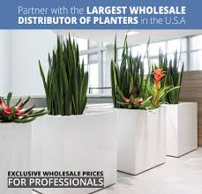 whole plant containers commercial