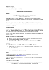 Sales Executive Job Description Sales Executive Role