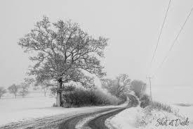 Snow Scenes Shot At Dusk