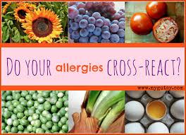 Pollen Food Allergy Chart Do Your Allergies Cross React