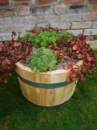 half oak beech barrels half oak beech barrels