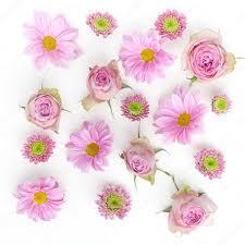 Behang Textuur Roze Bloemen Op Witte Achtergrond Plat Lag Top