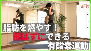 家 で 出来る 有 酸素 運動