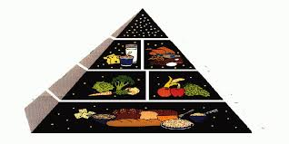 Food Group Pyramid Chart What Is The Best Food Pyramid Chart For Kids Whyienjoy