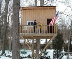 Image result for usa tree house