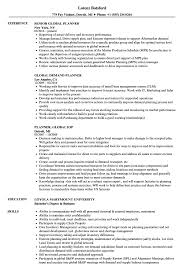 Global Planner Resume Samples Velvet Jobs
