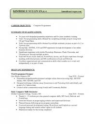 The Most Brilliant Sample Resume For Computer Programmer Resume