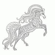 Paarden Kleurplaat Springen En Speletjes Norskiinfo