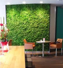 moss wall 1