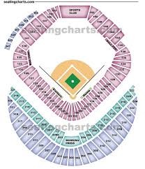 Tropicana Field Seating Chart View Tampa Bay Rays Seating Chart Raysseatingchart Com