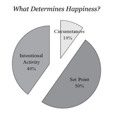 Happiness Chart Lessons From The How Of Happiness By Sonja Lyubomirsky