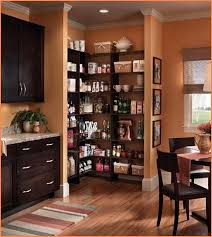 Corner Pantry Cabinets with Blind Corner Pantry Cabinet Home Design Ideas  with Pantry Cabinet Espresso with