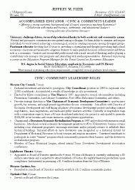 Attorney Resume Samples Amazing Civic Leader Political Resume Example Within Attorney Resume