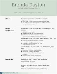 Simple Resume Outline Best 25 Concept Resume Format Sample S
