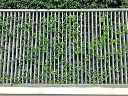 Modern metal fence design Modern Pipe Modern Fence Design Modern Metal Fence Steel Fence Design Modern Garden Fence Design Ideas Wasistmeinautowert Modern Fence Design Modern Metal Fence Steel Fence Design Modern