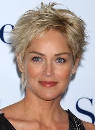 short hairstyles for thick hair photo 15