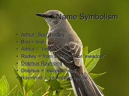 tkam notes symbols themes motifs bird symbolism bluejays  3