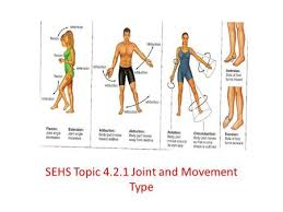 types of joint movements. sehs topic joint and movement type types of movements y