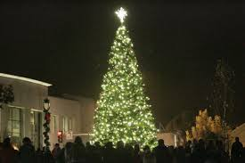 Napa Christmas Tree Lighting Gallery Tree Lighting Art On First Napavalleyregister Com