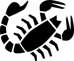 Image result for astrology virgo sign